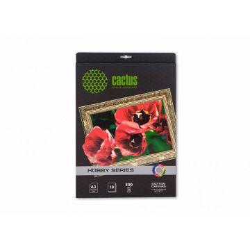 Холст Cactus CS-CA326010...