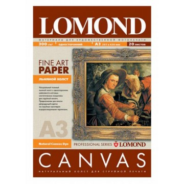 Холст Lomond 0908312